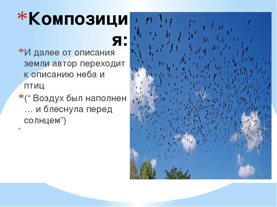 Композиция: И далее от описания земли автор переходит к описанию неба и птиц...