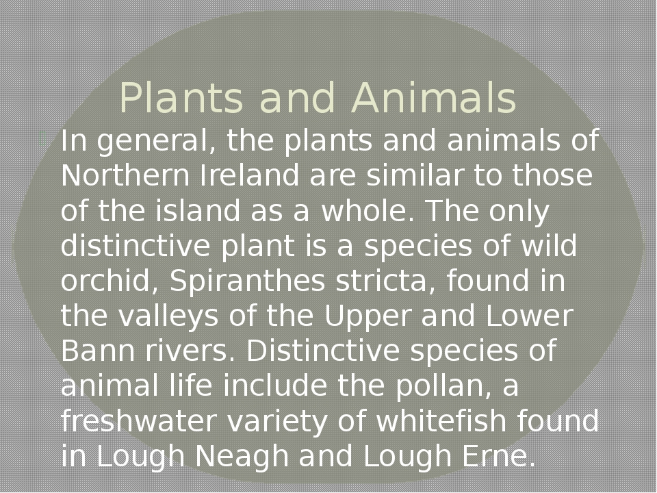 Plants and Animals In general, the plants and animals of Northern Ireland are...