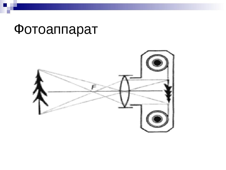 оптика фотоаппарата физика заповедник