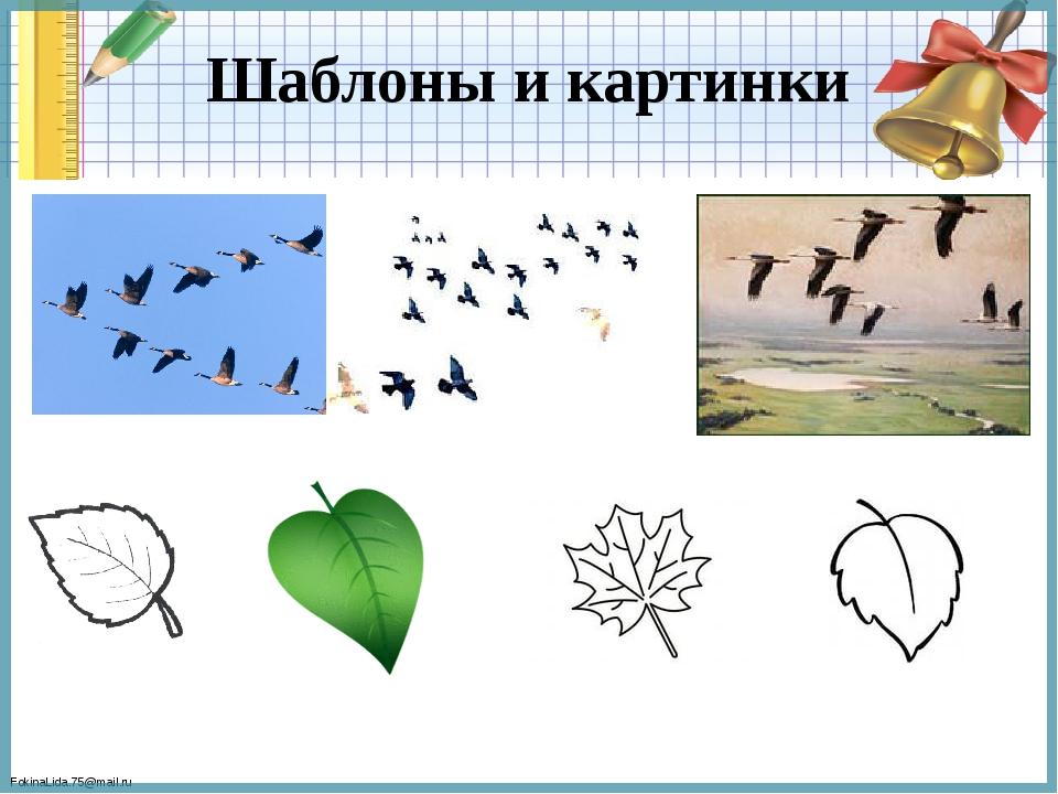 Шаблоны и картинки FokinaLida.75@mail.ru