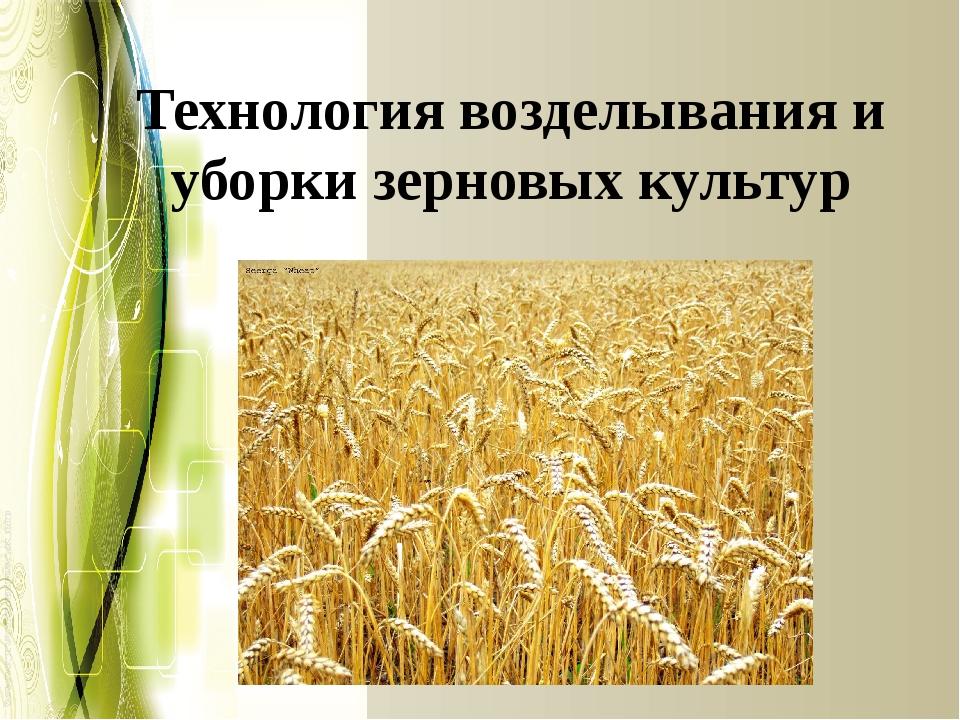 Технология возделывания и уборки зерновых культур