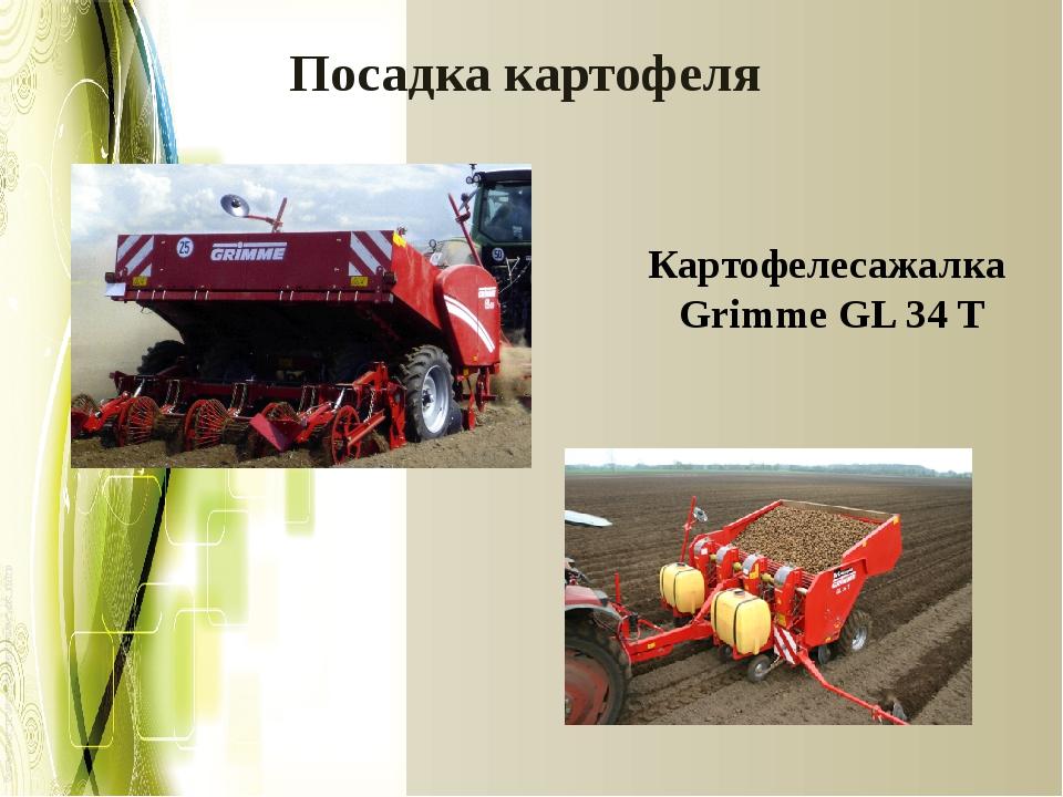 Посадка картофеля Картофелесажалка Grimme GL 34 T