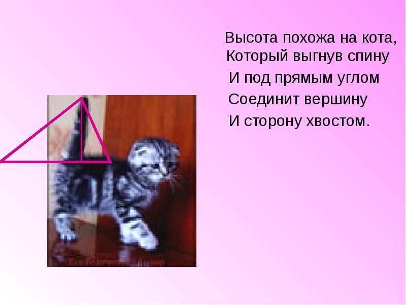 hello_html_m792a1e9a.jpg