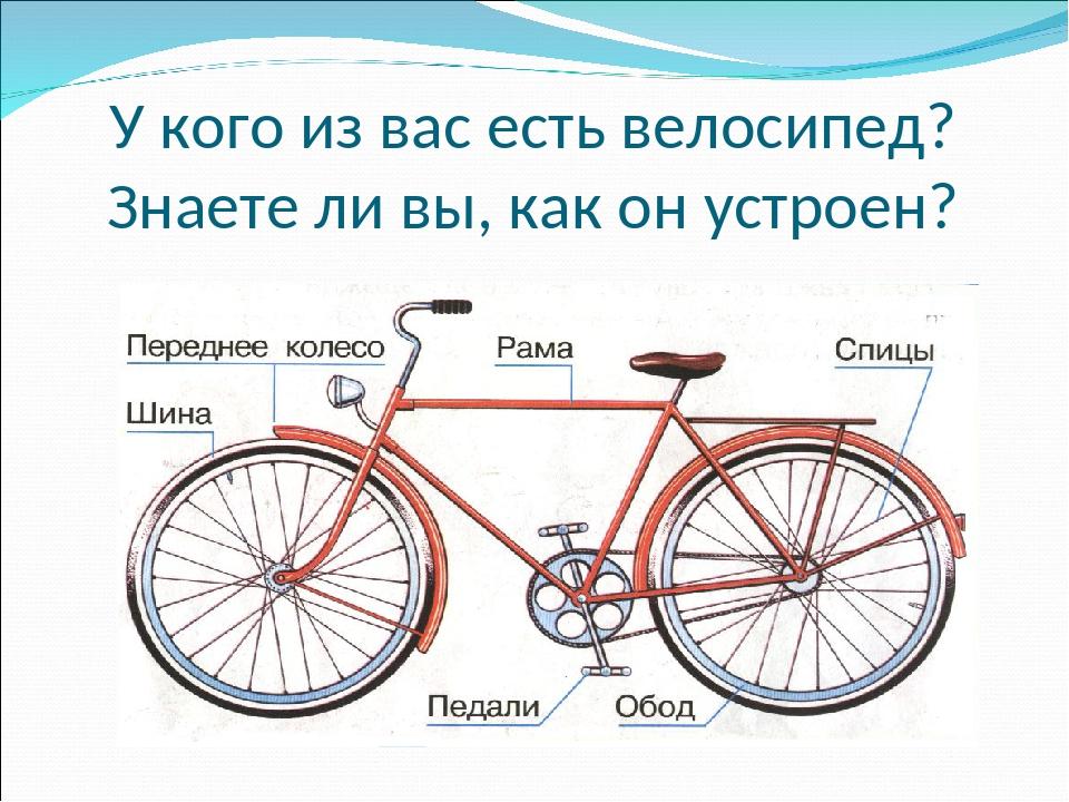 У кого из вас есть велосипед? Знаете ли вы, как он устроен?