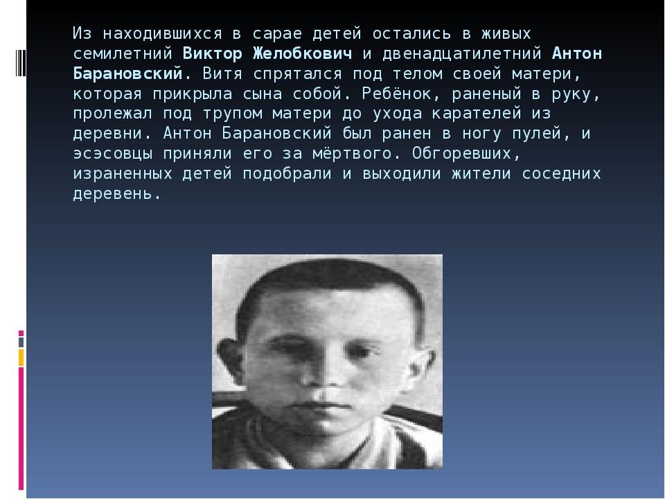 Из находившихся в сарае детей остались в живых семилетнийВиктор Желобковичи...