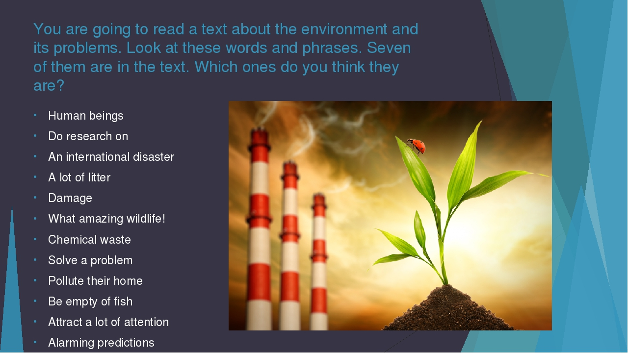 You are going to read a text about the environment and its problems. Look at...
