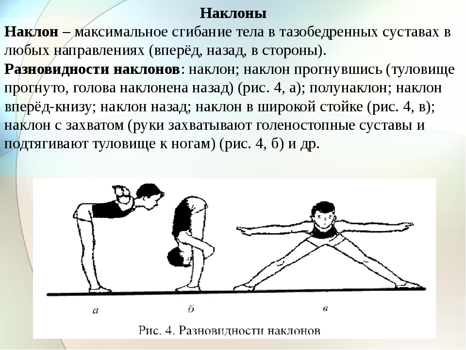 Наклоны Наклон – максимальное сгибание тела в тазобедренных суставах в любых...