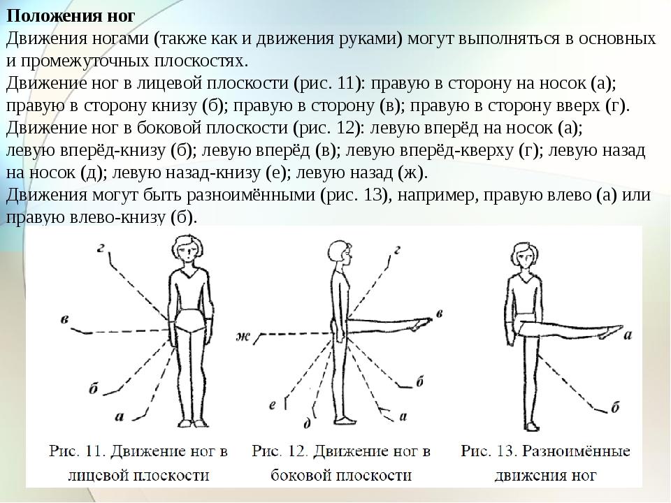 Положения ног Движения ногами (также как и движения руками) могут выполняться...