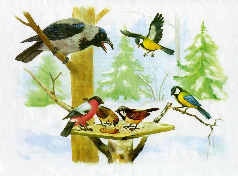 Картинка птица для доу