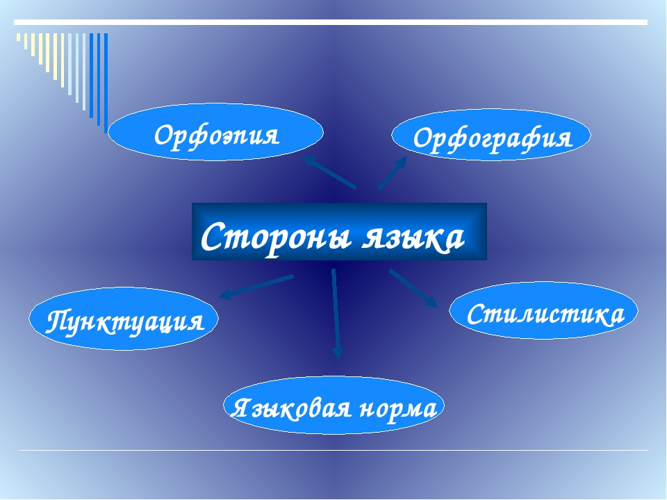 Стороны языка Орфоэпия Орфография Пунктуация Стилистика Языковая норма