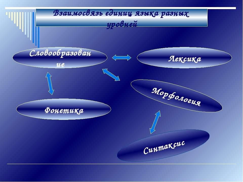 Взаимосвязь единиц языка разных уровней Словообразование Лексика Морфология С...