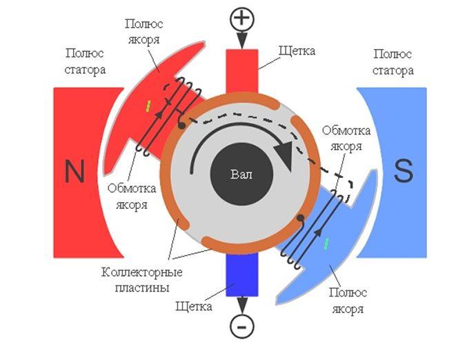 Принцип работы модели электродвигателя елена малова