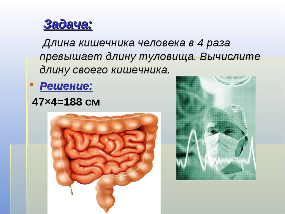 Задача: Длина кишечника человека в 4 раза превышает длину туловища. Вычислит...