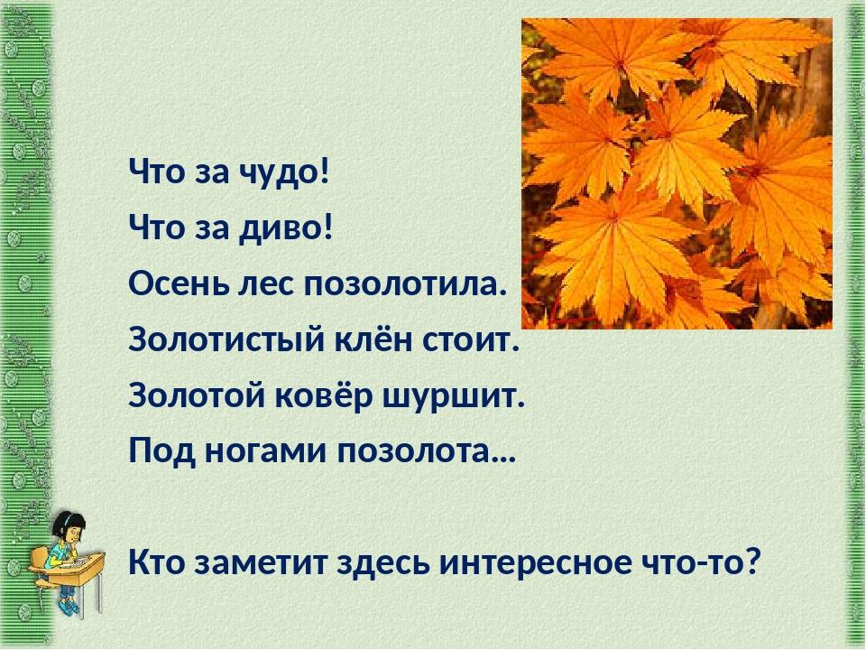 Что за чудо! Что за диво! Осень лес позолотила. Золотистый клён стоит. Золото...