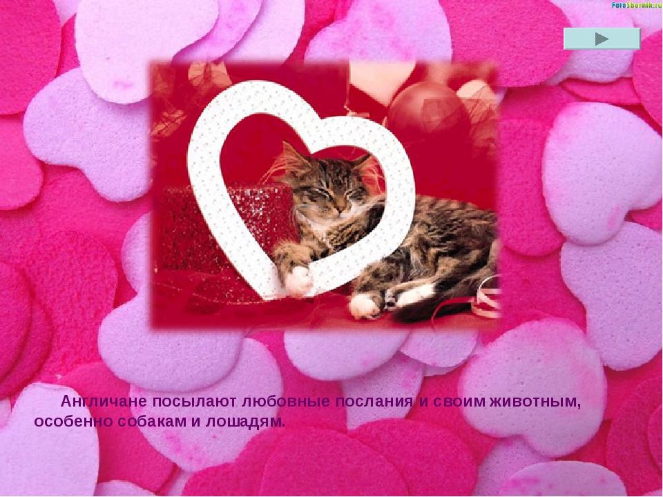 Англичане посылают любовные послания и своим животным, особенно собакам и лош...