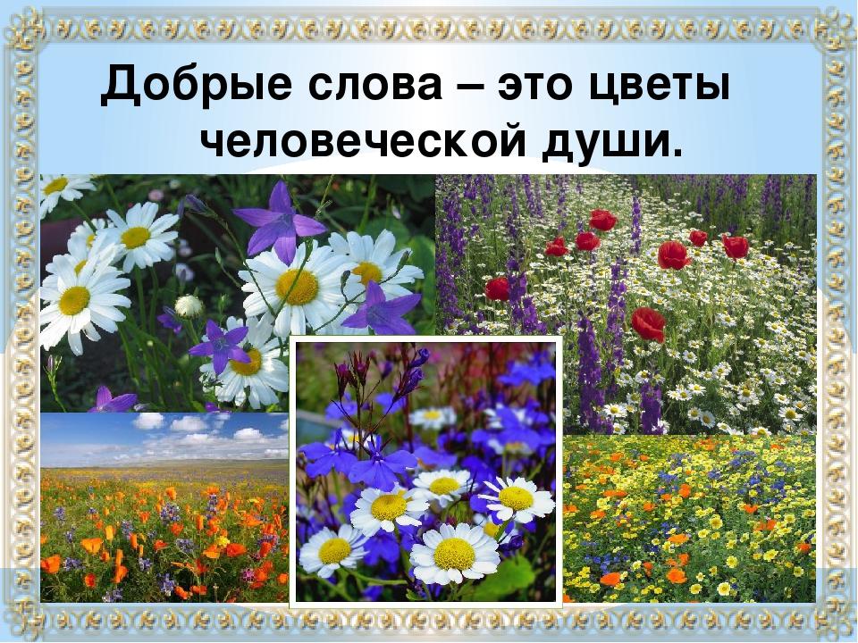 Добрые слова – это цветы человеческой души.