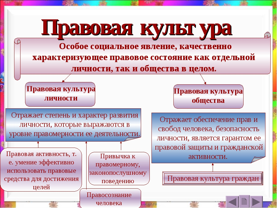 Правовая культура Особое социальное явление, качественно характеризующее прав...