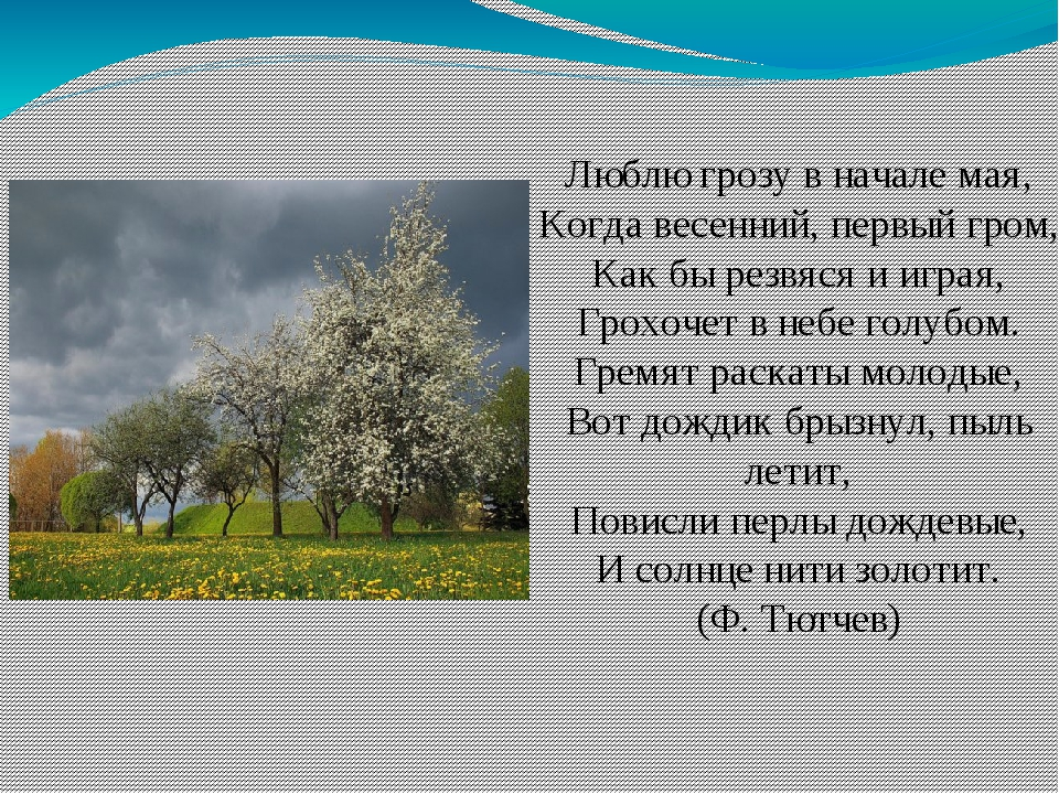 стихотворение весной весной в начале мая