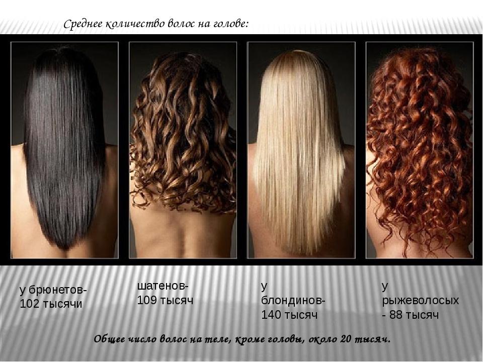Общее число волос на теле, кроме головы, около 20 тысяч. Среднее количество в...