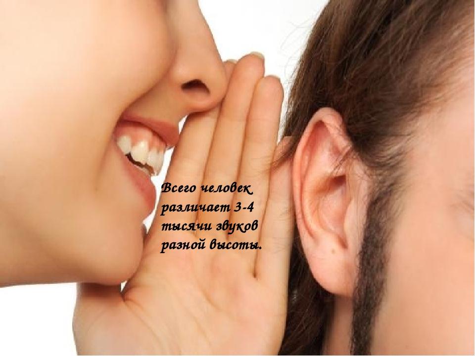 Всего человек различает 3-4 тысячи звуков разной высоты.