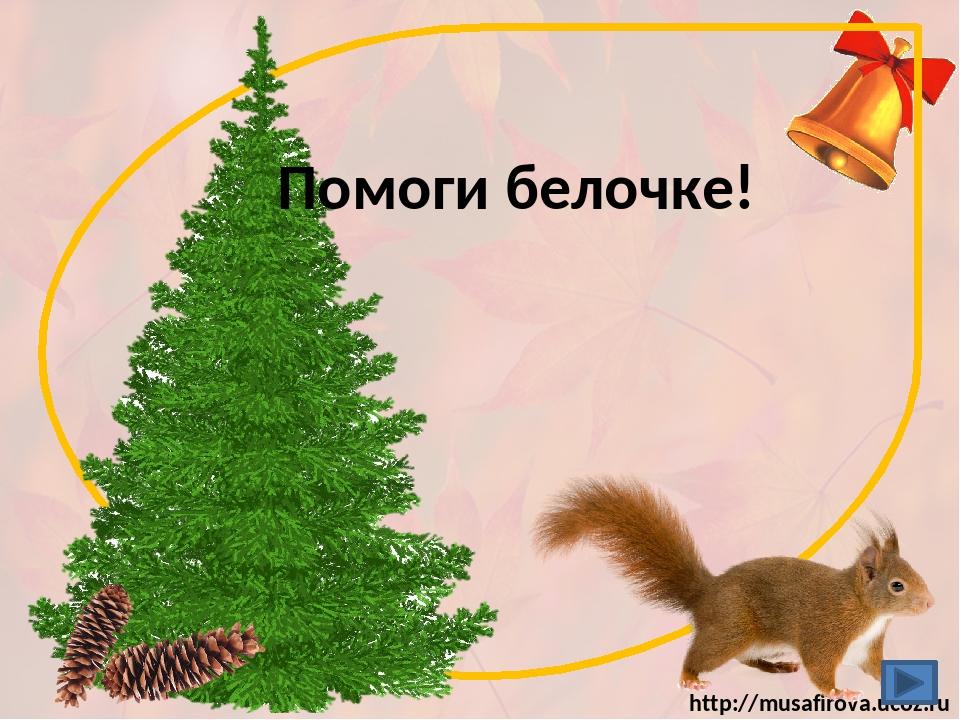 Помоги белочке! http://musafirova.ucoz.ru