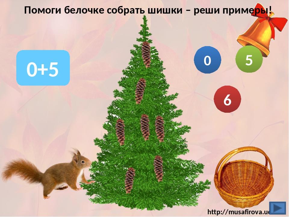 Помоги белочке собрать шишки – реши примеры! 0+5 6 5 0 http://musafirova.ucoz...