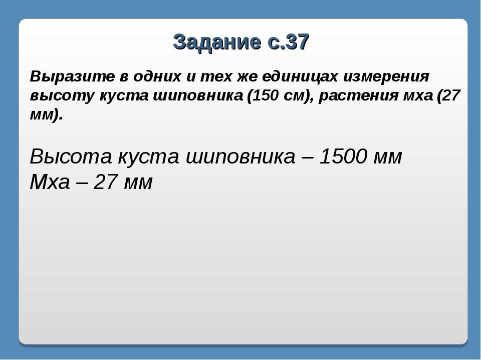 Задание с.37 Выразите в одних и тех же единицах измерения высоту куста шиповн...