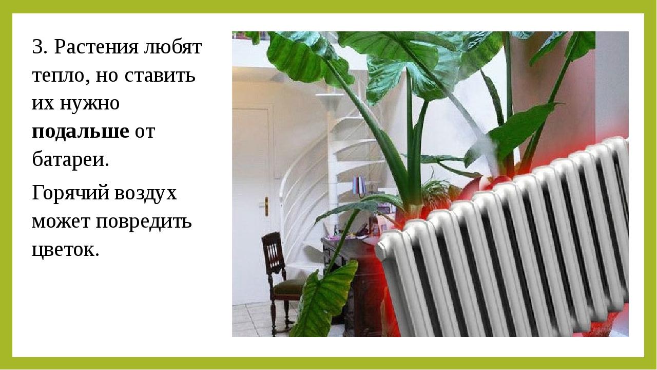 3. Растения любят тепло, но ставить их нужно подальше от батареи. Горячий воз...