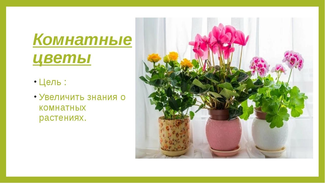 Комнатные цветы Цель : Увеличить знания о комнатных растениях.