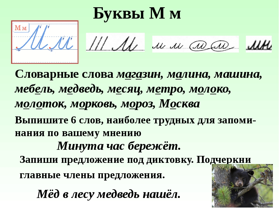 Буквы М м Словарные слова магазин, малина, машина, мебель, медведь, месяц, ме...