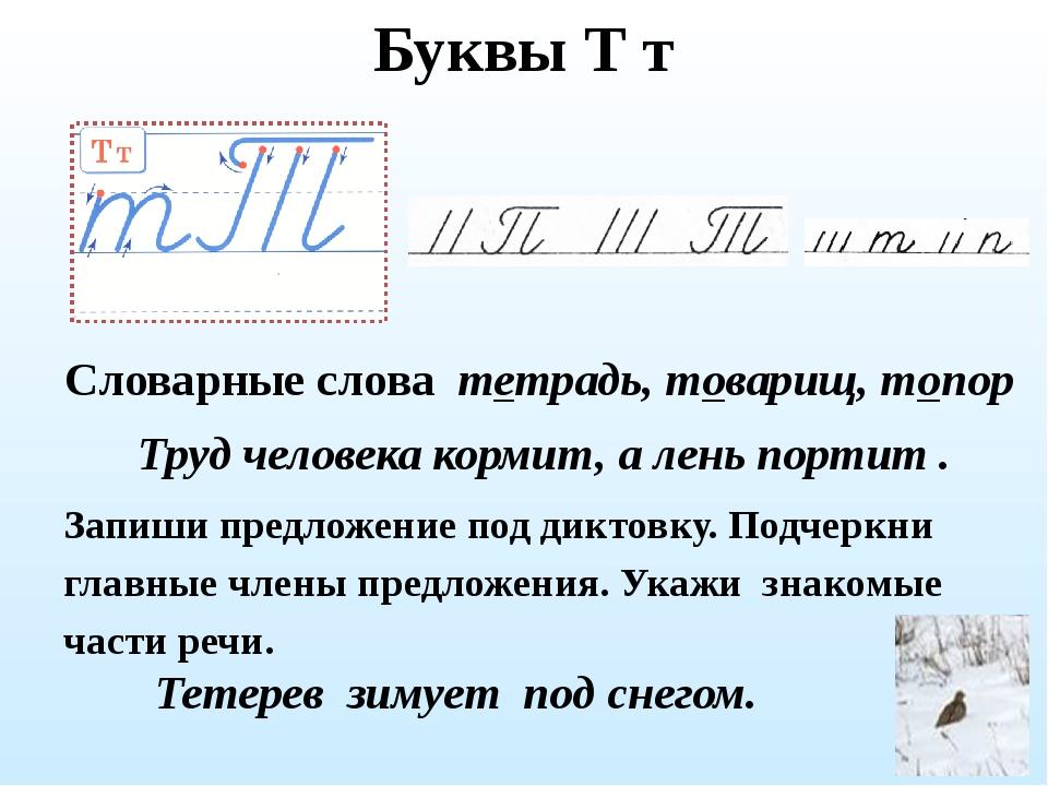 Буквы Т т Словарные слова тетрадь, товарищ, топор Запиши предложение под дикт...
