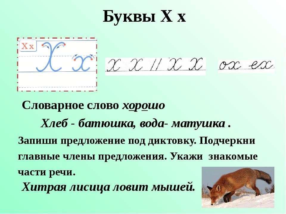 Буквы Х х Словарное слово хорошо Запиши предложение под диктовку. Подчеркни г...