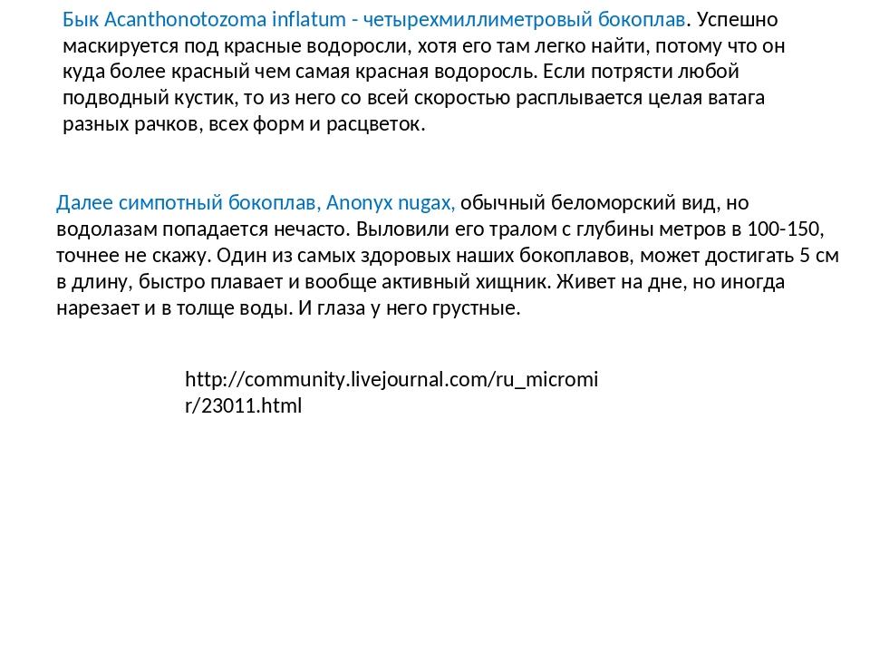 Бык Acanthonotozoma inflatum - четырехмиллиметровый бокоплав. Успешно маскиру...
