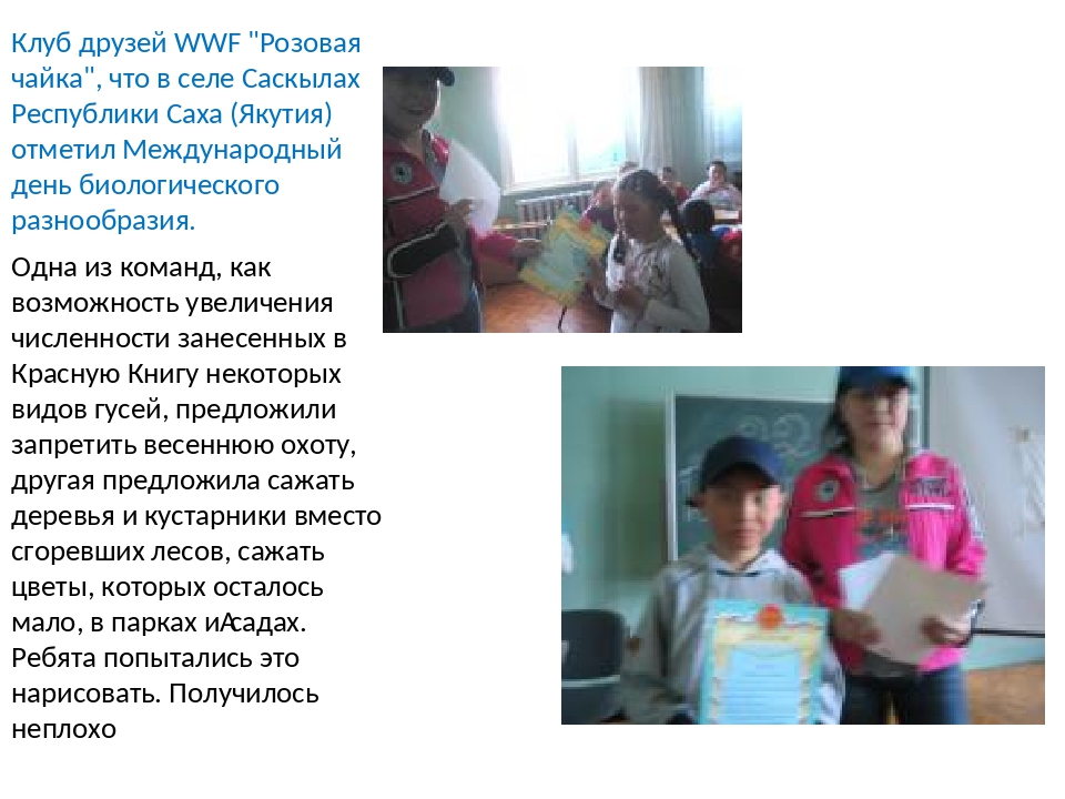"""Клуб друзей WWF """"Розовая чайка"""", что в селе Саскылах Республики Саха (Якутия)..."""
