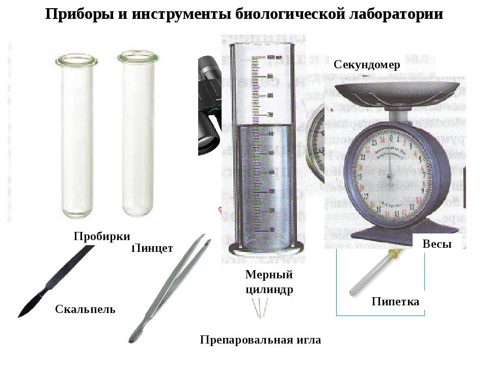 Приборы и инструменты биологической лаборатории Микроскоп Бинокль Пинцет Секу...
