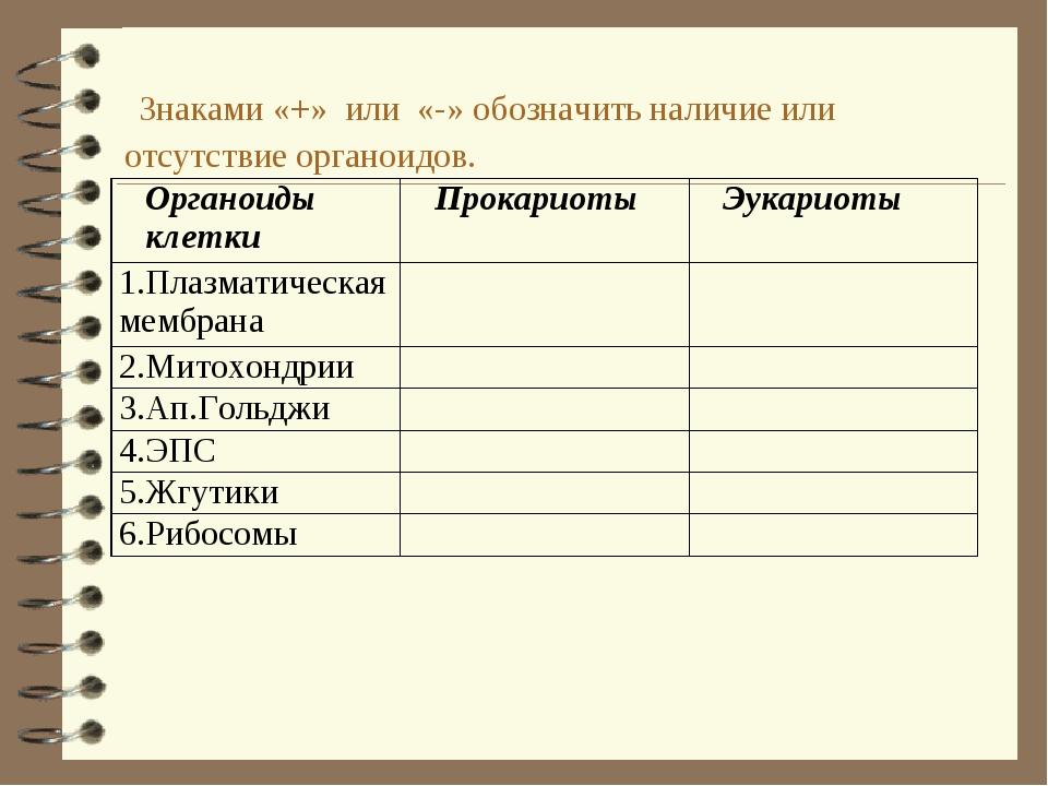 Знаками «+» или «-» обозначить наличие или отсутствие органоидов. Органоиды...
