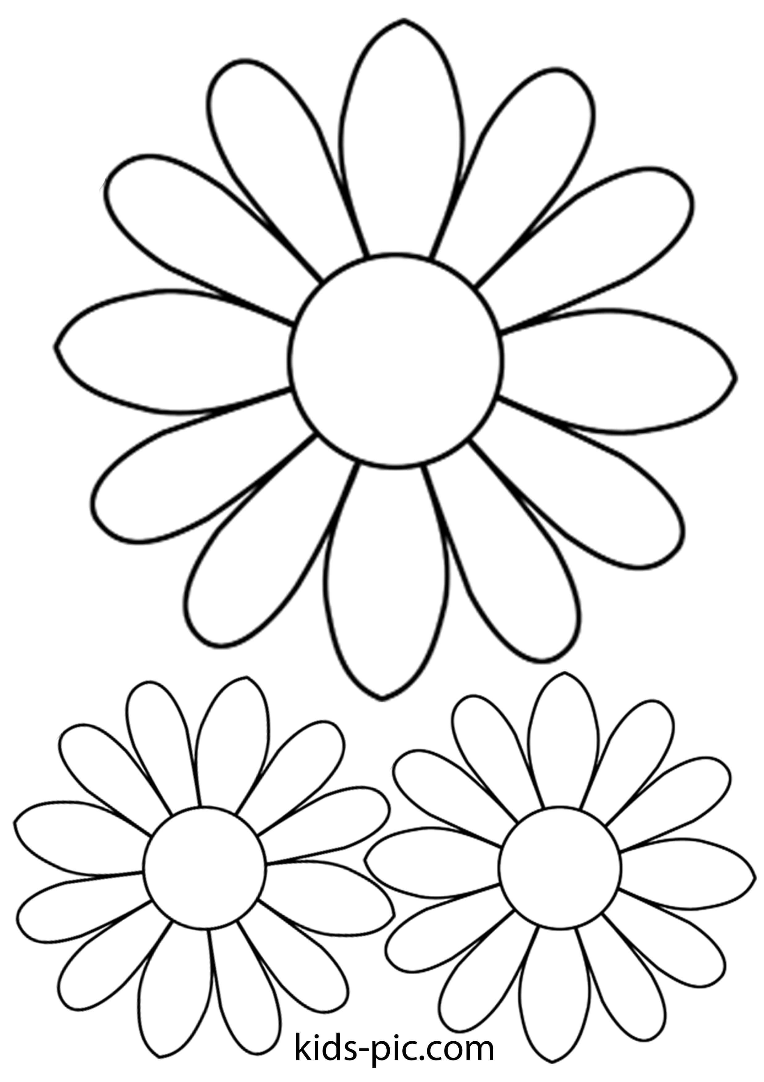 резной цветок ромашка картинка шаблон таких паразитов