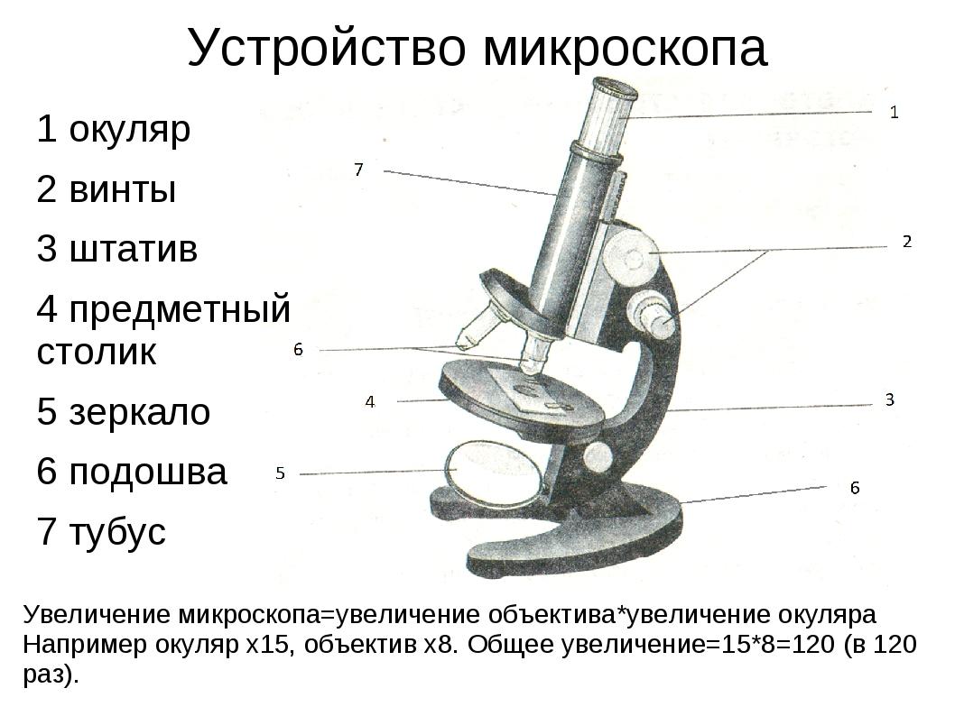 Микроскоп части картинки