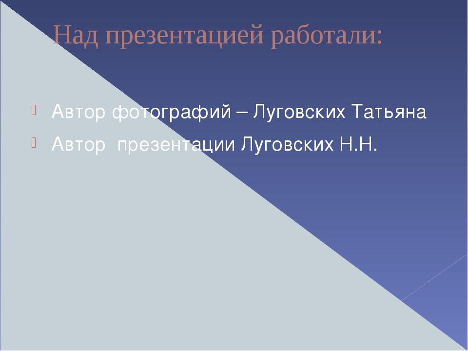 Над презентацией работали: Автор фотографий – Луговских Татьяна Автор презент...