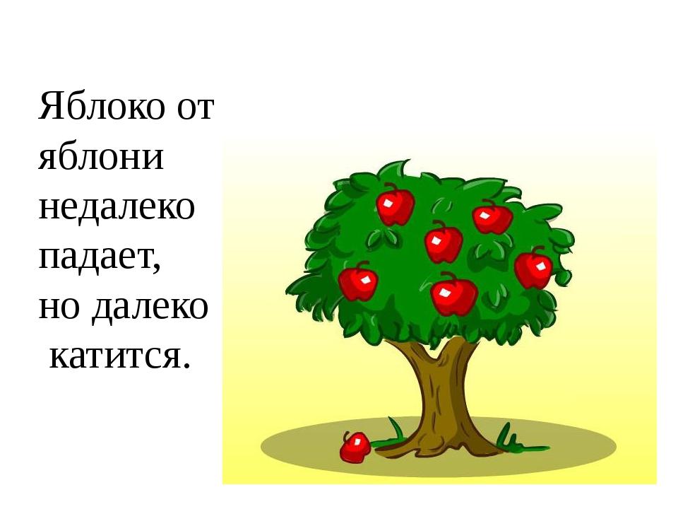 картинка яблоко от недалеко падает воскресенье старт