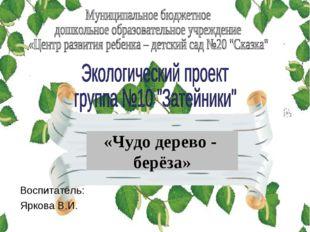 «Чудо дерево - берёза» Воспитатель: Яркова В.И.