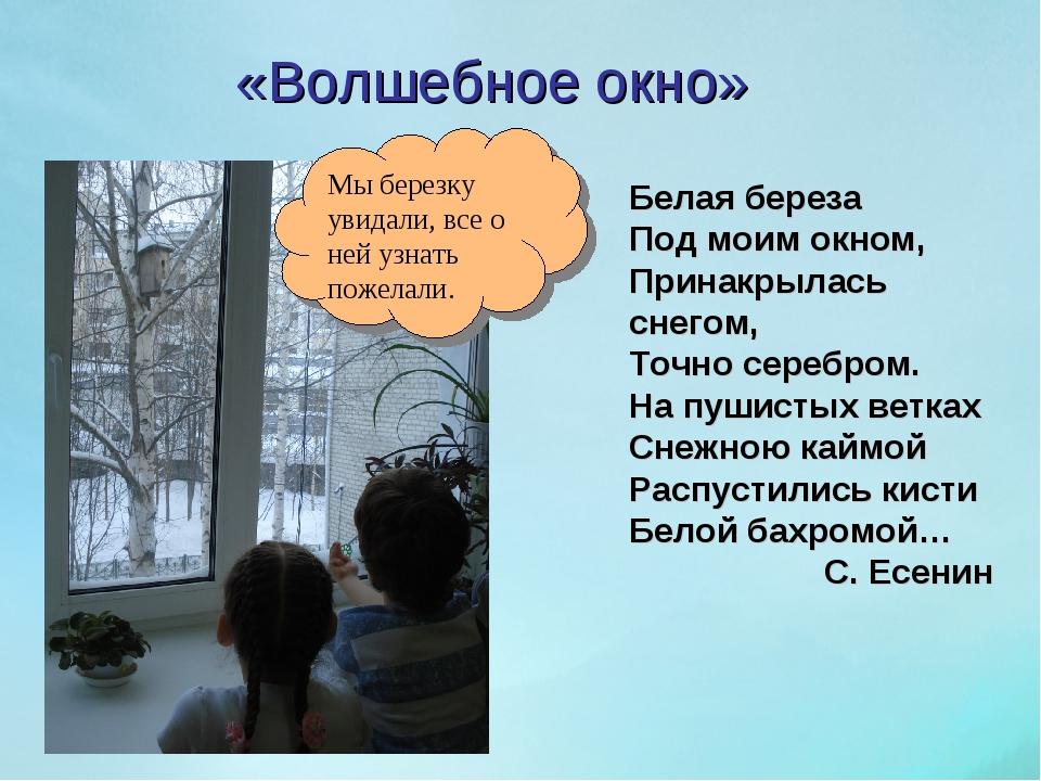 «Волшебное окно» Белая береза Под моим окном, Принакрылась снегом, Точно сере...
