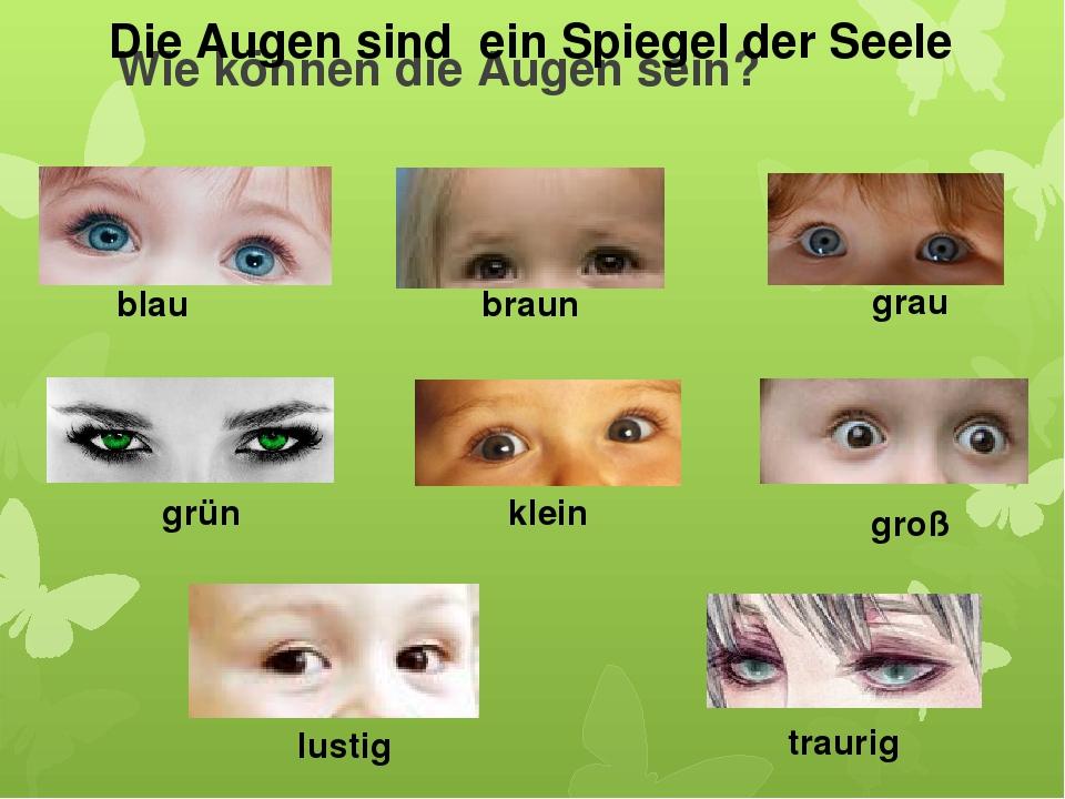 Wie können die Augen sein? blau braun grau grün klein groß lustig traurig Die...