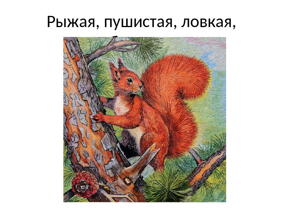 Рыжая, пушистая, ловкая, быстрая