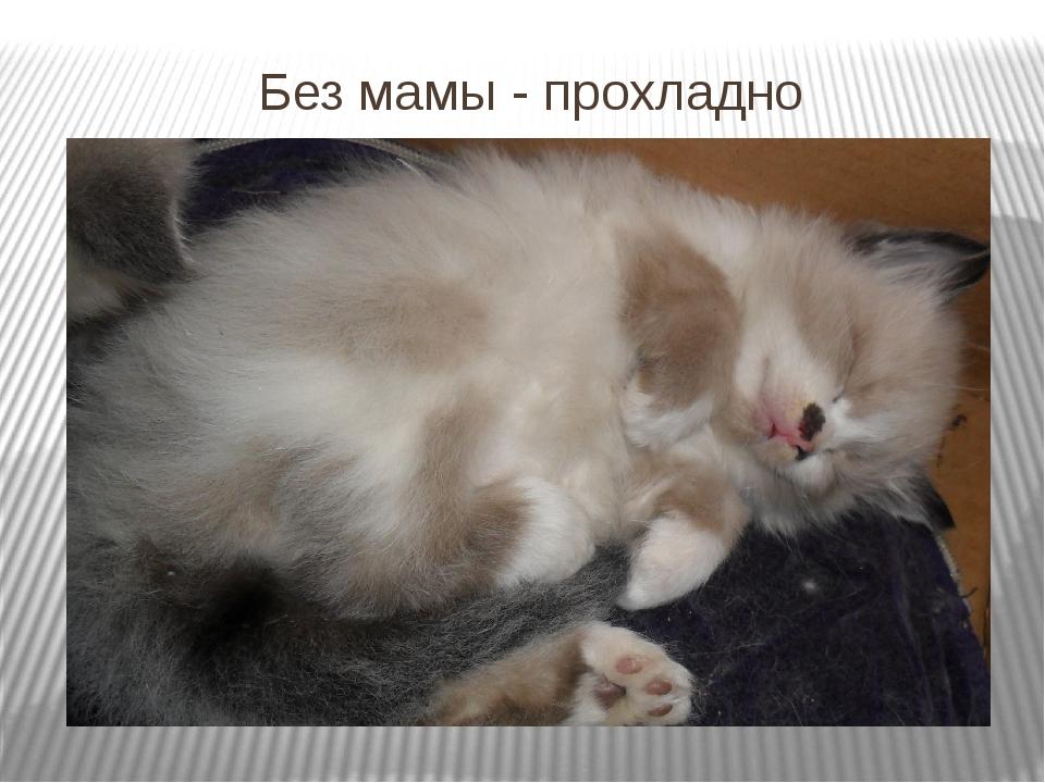 Без мамы - прохладно
