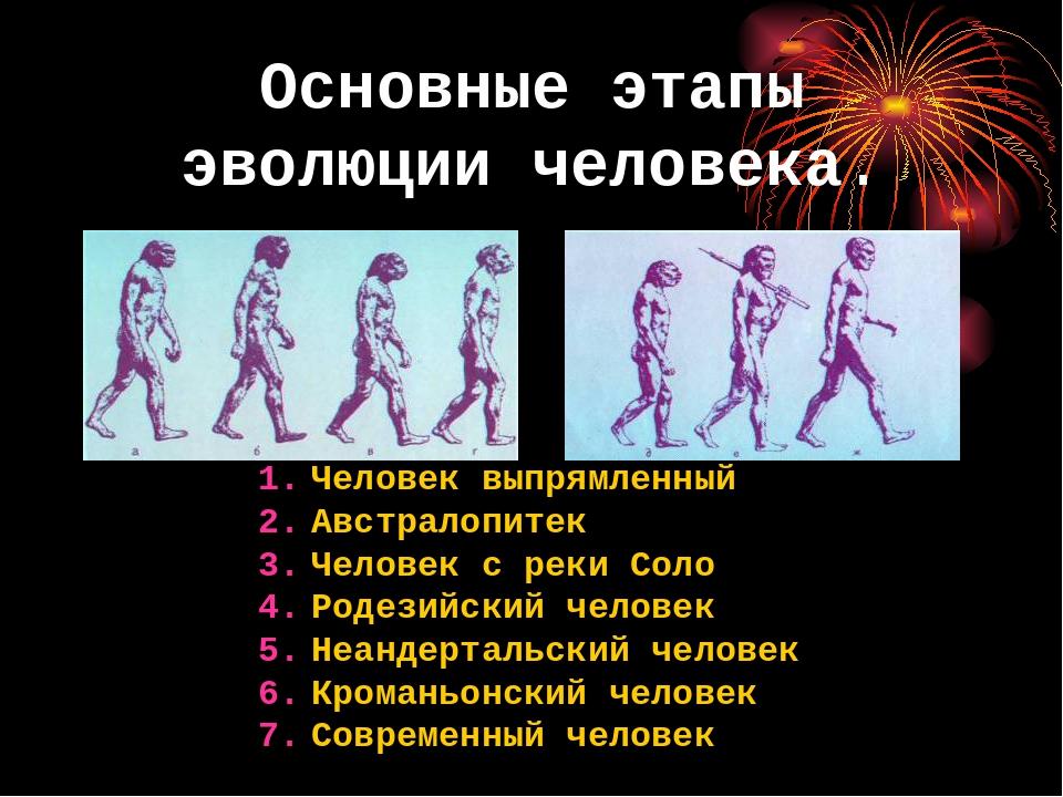 картинки этапов эволюции человека все