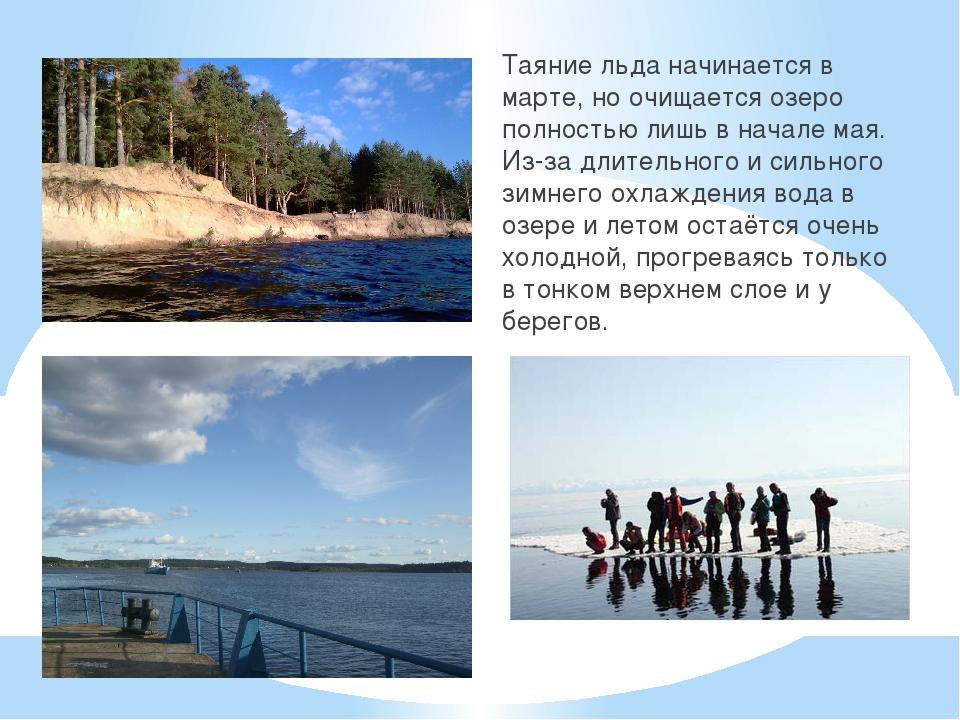Таяние льда начинается в марте, но очищается озеро полностью лишь в начале ма...