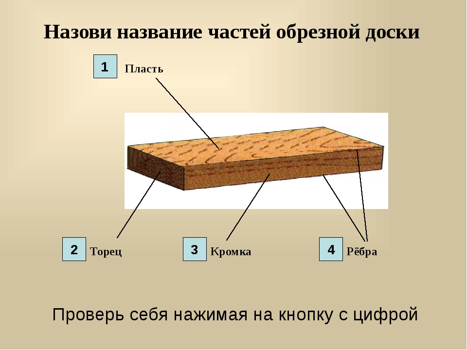 Назови название частей обрезной доски Пласть Торец Кромка Рёбра 1 2 3 4 Прове...