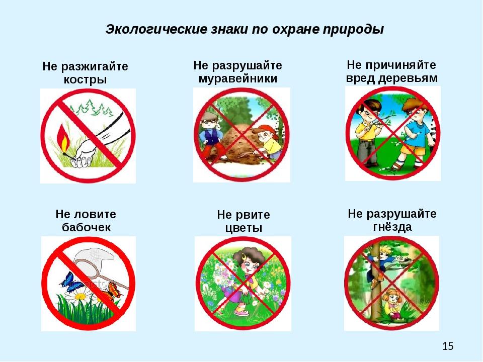 Знаки о природе картинки для детей