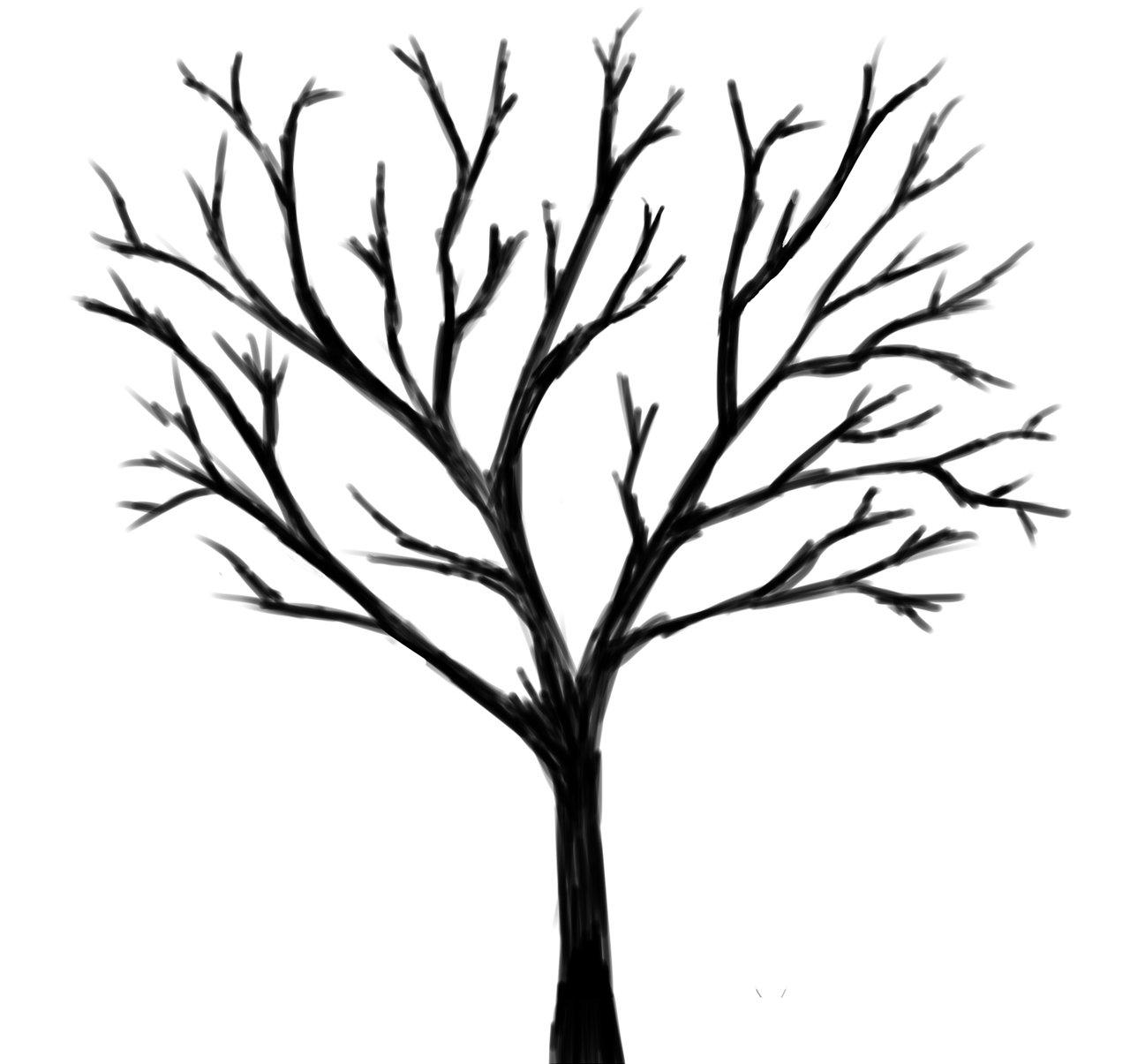 картинка дерева с ветками на белом фоне была, как мне